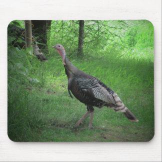 Tapis De Souris La Turquie sauvage américaine