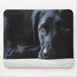 Tapis De Souris Labrador noir