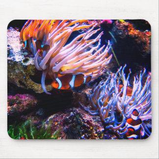 Tapis De Souris Le néon colore des poissons de clown