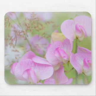 Tapis De Souris Le pois doux fleurit | Seabeck, WA