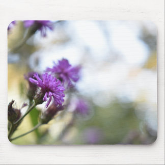 Tapis De Souris Le pourpre fleurit la photographie de nature d'été