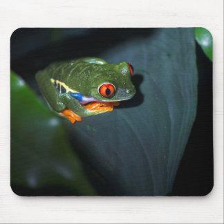 Tapis De Souris Le rouge observe la séance de grenouille