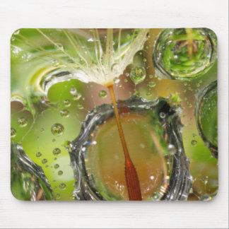 Tapis De Souris L'eau sur la graine de pissenlit, CA