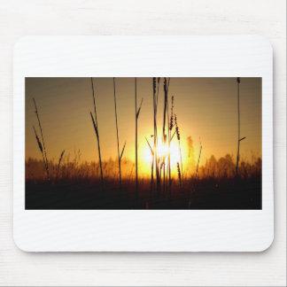 Tapis De Souris Lever de soleil brumeux sur l'île de St Joseph