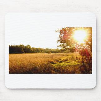 Tapis De Souris Lever de soleil de matin de fin d'été sur l'île de