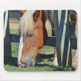 Tapis De Souris L'herbe est plus verte sur l'autre cheval latéral