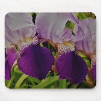 Tapis De Souris L'iris pourpre fleurit la photo Mousepad