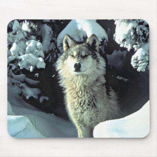 Tapis De Souris Loup dans la neige