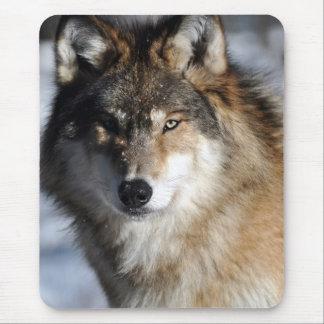 Tapis De Souris Loup gris
