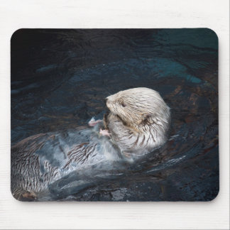 Tapis De Souris Loutre mangeant le zoo sauvage aquatique de nature