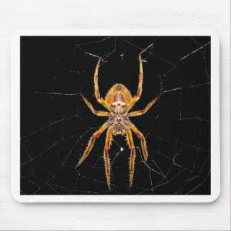 Tapis De Souris macro araignée Colombie d'insecte