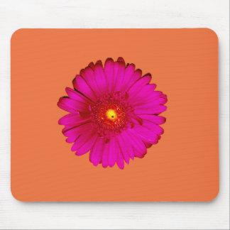 Tapis De Souris Marguerite de Gerbera de roses indien sur l'orange