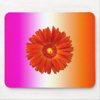 Tapis De Souris Marguerite orange vive de Gerbera sur l'orange