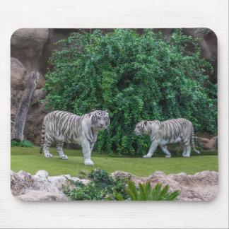 Tapis De Souris Mousepad blanc de tigres
