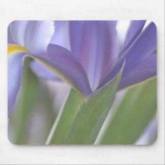 Tapis De Souris Mousepad de bourgeon d'iris