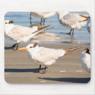 Tapis De Souris Mousepad d'oiseaux de plage