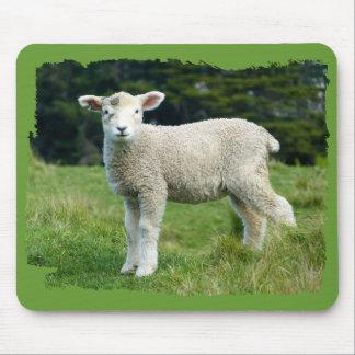 Tapis De Souris Moutons boueux mignons de bébé d'agneau dans le