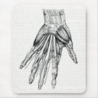 Tapis De Souris Muscles médicaux vintages de dessin de la main