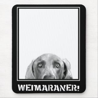 Tapis De Souris Nation de Weimaraner : Weimaraner dans une boîte !