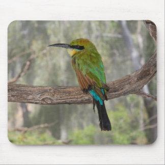 Tapis De Souris Oiseau d'abeille-mangeur d'arc-en-ciel, Australie