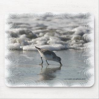 Tapis De Souris Oiseau Mousepad de plage