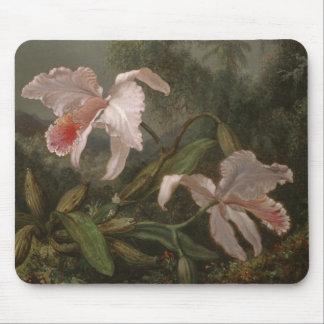 Tapis De Souris Orchidées et colibris de jungle