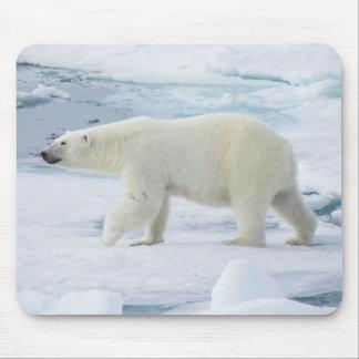 Tapis De Souris Ours blanc marchant, Norvège