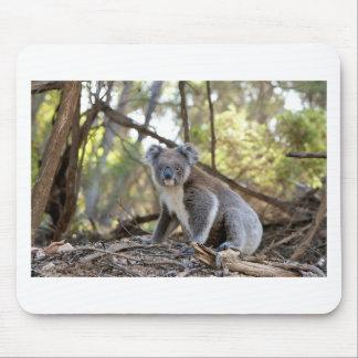 Tapis De Souris Ours de koala gris et blanc