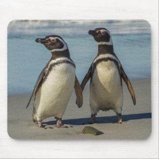 Tapis De Souris Paires de pingouins sur la plage