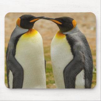 Tapis De Souris Paires du Roi pingouins, Malouines