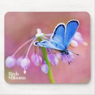 Tapis De Souris Papillon azuré