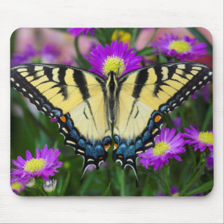 Tapis De Souris Papillon de machaon sur la marguerite