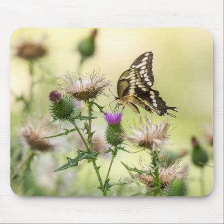 Tapis De Souris Papillon géant de machaon