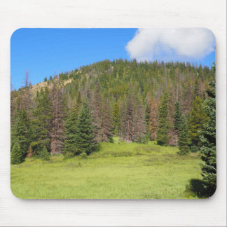 Tapis De Souris Parc national de montagne rocheuse
