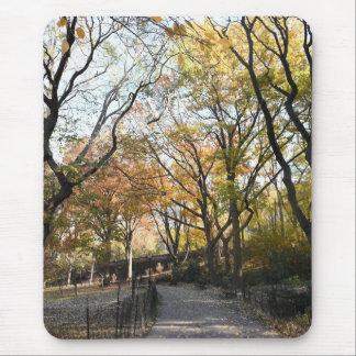 Tapis De Souris Parc New York City NYC de rive de feuille