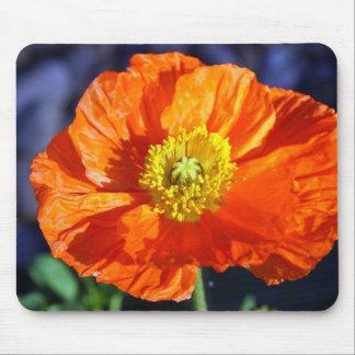 Tapis De Souris Pavot islandais orange