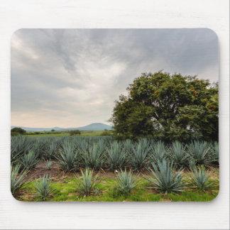 Tapis De Souris Paysage avec l'agave bleu