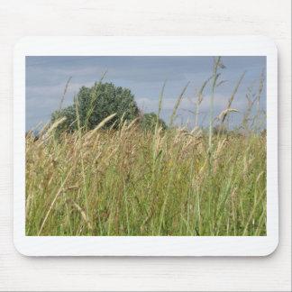 Tapis De Souris Paysage d'été de champ sauvage dans la campagne