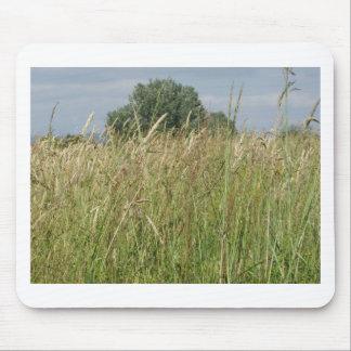 Tapis De Souris Paysage d'été de champ sauvage. La Toscane, Italie
