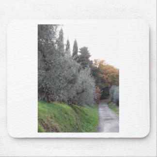 Tapis De Souris Paysage rural avec la route goudronnée pendant
