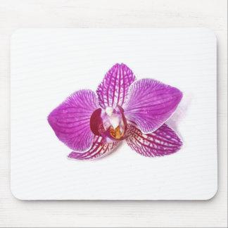 Tapis De Souris Peinture florale d'aquarel de phalaenopsis lilas