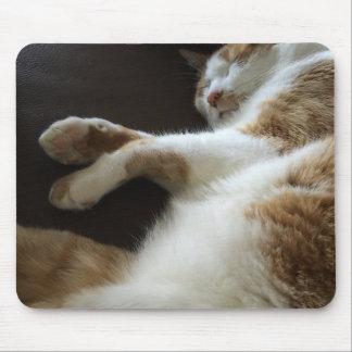 Tapis De Souris Petits sommes de chat sur le sofa