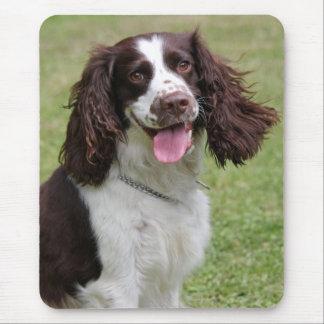 Tapis De Souris Photo de chien d'épagneul de springer anglais