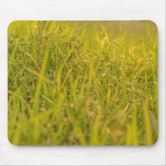 Tapis De Souris Photo de détail d'herbe