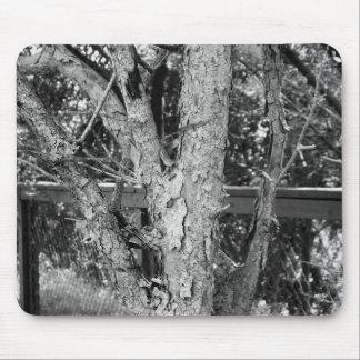 Tapis De Souris Photo noire et blanche de nature d'arbre