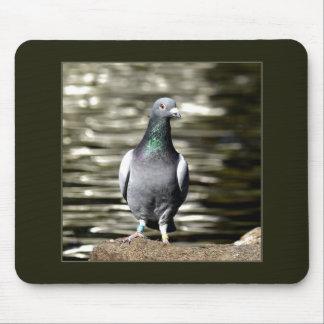 Tapis De Souris Pigeon