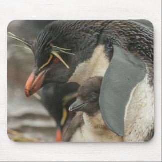 Tapis De Souris Pingouin et poussin de Rockhopper