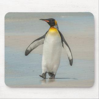 Tapis De Souris Pingouin marchant sur la plage