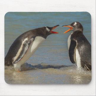 Tapis De Souris Pingouins discutant, Îles Falkland
