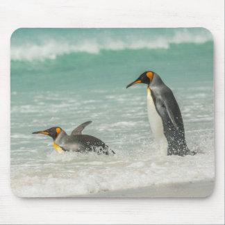 Tapis De Souris Pingouins nageant sur la plage